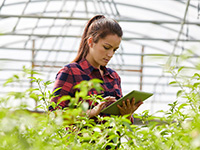 Woman using laptop in greenhouse
