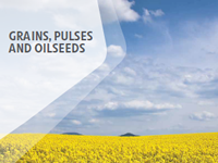 Grains, Pulses and Oilseeds capability