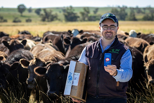 Sam O'Leary, Australian Organic Meats business development manager, holding the Escavox tracker on their Glenbye property in NSW.