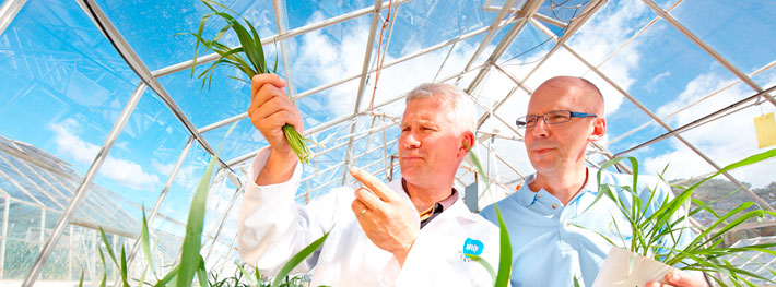 Bayer-CropScience-Case-thumb