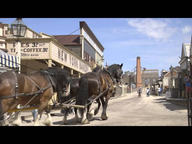 A video case study on Sovereign Hill